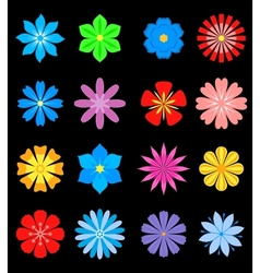 Set of flower blossoms vector image