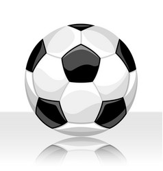 soccer ball on white background vector image
