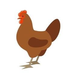 Cartoon chicken vector image vector image