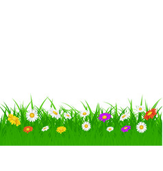grass foliage and flowers plants vector image