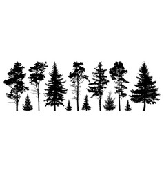 Forest evergreen trees silhouette isolated set vector