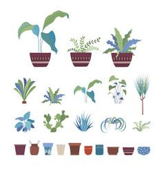 houseplants flowers in pots flat set vector image