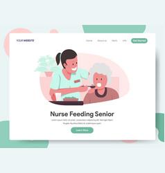 nurse or caregiver feeding senior vector image