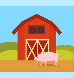 Pig in nature of farm ranch vector