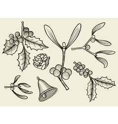 set with Christmas plants vector image