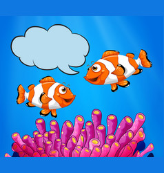 two clowfish swimming under the sea vector image