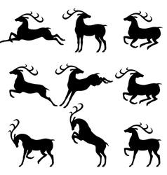 set deer beauty vector image vector image