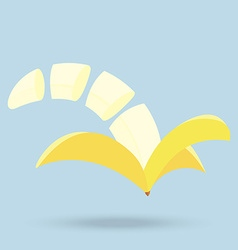 banana slices isolated on background vector image
