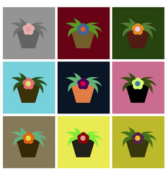 Assembly flat icons flowering pot vector