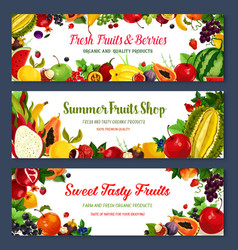 Banners for fresh fruit shop vector