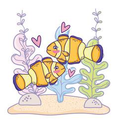 Clownfish couple animal with seaweed plants vector