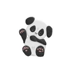 cute baby panda bear hand drawn vector image