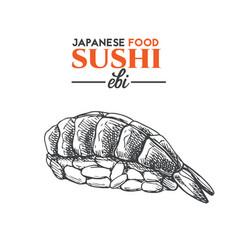 ebi sushi vector image