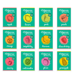 fruits and berries sketched cards hand drawn vector image