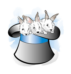 hat of the magician with three rabbits vector image