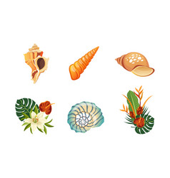 sea shells palm leaves and flowers set beautiful vector image