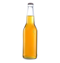 Transparent bottle with light beer vector