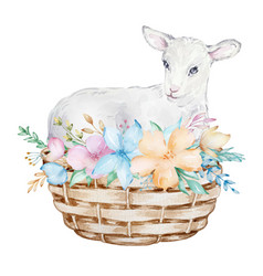 Watercolor a white lamb in a basket vector