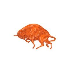 European bison charging drawing vector