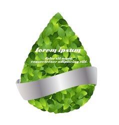Green eco friendly label from green leaves vector image
