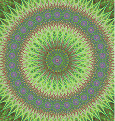 Green mandala ornament background design vector