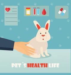 Veterinary medicine hospital doctor with cute vector