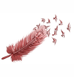 Feather bird background vector image
