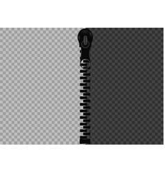 beautiful closed and open zip detail vector image