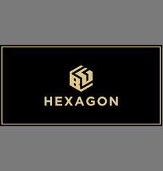 Bg hexagon logo vector