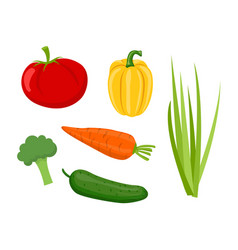 cucumber and tomatoes set vector image