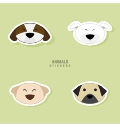 Cute dogs Face vector image