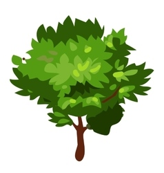 Green tree in cartoon style on white background vector image