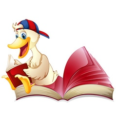 Little duck reading a book vector image