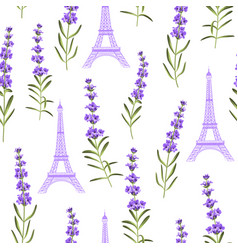 Pattern with violet lavender flowers vector