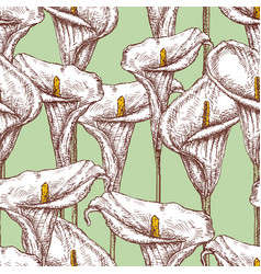 seamless pattern calla lilies sketches vector image