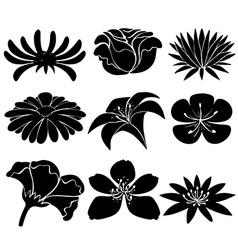 Set of black flowers vector image