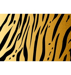 tigerskin3 vector image