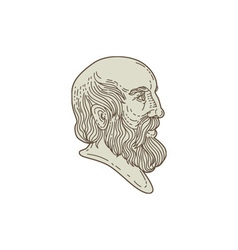 Plato Greek Philosopher Head Mono Line vector image vector image