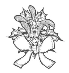 hand drawn mistletoe vector image