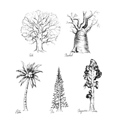 Set of hand-drawing style of graphic trees vector