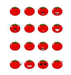 sixteen tomatoes emojis vector image
