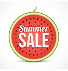 summer sale on watermelon slice isolated on white vector image
