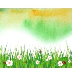 Watercolor summer background with green grass vector