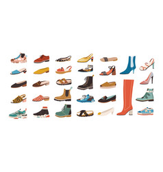 collection stylish elegant shoes and boots of vector image