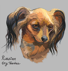 Colorful russian long-haired toy terrier hand vector