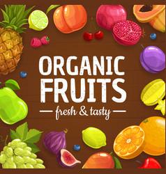 fresh fruits and berries organic farm food vector image