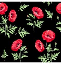 pattern poppy flowers vector image