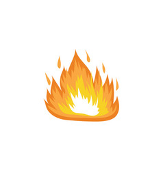 red and orange hot fire flame burns vector image