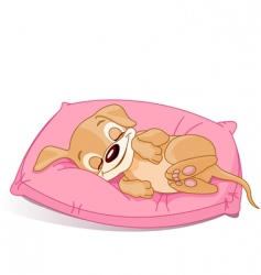 sleeping puppy vector image