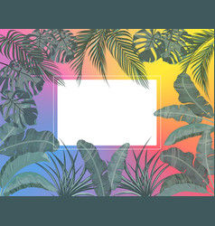 The leaves tropical palm trees in vector